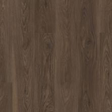 Shaw Floors Resilient Residential Pantheon Hd+ Natural Bevel Charred Earth 07232_1051V