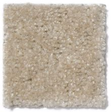 Shaw Floors Foxfire Sand Storm 18152_13418