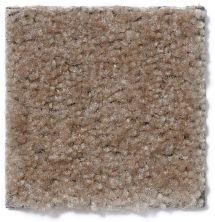 Shaw Floors Foxfire Oatfield 18751_13418