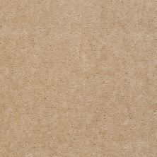 Shaw Floors Venture Suede Cloth 24141_13824