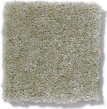 Shaw Floors Venture Grasshopper 24335_13824