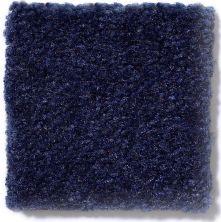 Shaw Floors Venture Blueberry 24438_13824