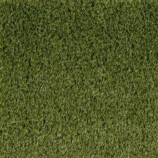 Shaw Grass Sg Summer Premier 72 Olive 00301_146SG