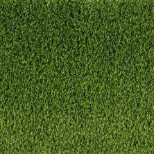 Shaw Grass Sg Summer Premier 72 Spring Green 00302_146SG