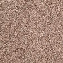 Anderson Tuftex Hillshire Blossom 00652_14DDF