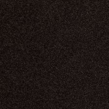 Anderson Tuftex Hillshire Dark Espresso 00759_14DDF