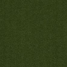 Shaw Grass All Seasons II Uni Green 00300_156SG