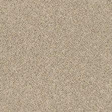 Anderson Tuftex SFA Best Friend Sand Dune 00223_16SSF