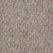 Shaw Floors Budget Berber (sutton) Dania 12 Tree Bark 86750_18286