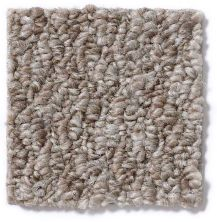 Shaw Floors Budget Berber (sutton) Dania 12 Tree Bark 86750_18286
