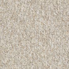 Shaw Floors Newmarketplac12 Raffia 56201_18656