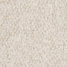 Shaw Floors Budget Berber (sutton) Mckeesport II 15 Knapsack 65701_18666