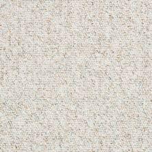 Shaw Floors Budget Berber (sutton) Newbarbourvll12 Teepee 07140_18707