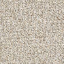 Shaw Floors Budget Berber (sutton) Newbarbourvll12 Picnic Basket 07201_18707