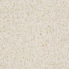 Shaw Floors Budget Berber (sutton) Newbarbourvll12 Half Moon 07240_18707