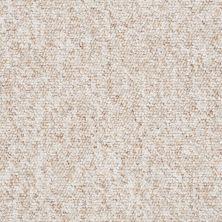 Shaw Floors Budget Berber (sutton) Newbarbourvll12 Spun Sugar 07241_18707