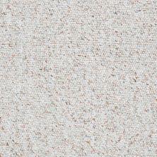 Shaw Floors Budget Berber (sutton) Newbarbourvll12 Bayou Mist 07340_18707