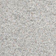 Shaw Floors Budget Berber (sutton) Newbarbourvll12 Marble 07540_18707
