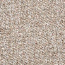 Shaw Floors Budget Berber (sutton) Newbarbourvll12 Prairie Sand 07706_18707