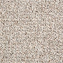 Shaw Floors Budget Berber (sutton) Newbarbourvll12 Autumn Breeze 07730_18707