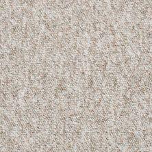Shaw Floors Budget Berber (sutton) Newbarbourvll12 Mushroom 07735_18707