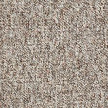 Shaw Floors Budget Berber (sutton) Newbarbourvll12 Brown Thrush 07736_18707