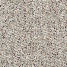 Shaw Floors Budget Berber (sutton) Newbarbourvll12 Elm 07740_18707