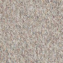 Shaw Floors Budget Berber (sutton) Newbarbourvll12 Pheasant 07741_18707