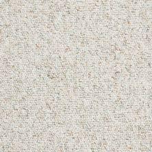 Shaw Floors Budget Berber (sutton) Newbarbourvll15 Teepee 07140_18708