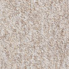 Shaw Floors Budget Berber (sutton) Newbarbourvll15 Picnic Basket 07201_18708