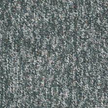 Shaw Floors Budget Berber (sutton) Newbarbourvll15 Holly 07311_18708