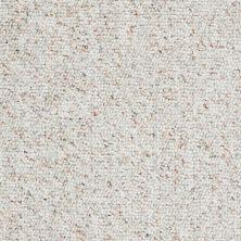 Shaw Floors Budget Berber (sutton) Newbarbourvll15 Bayou Mist 07340_18708