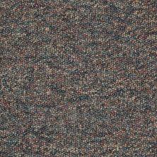 Shaw Floors Budget Berber (sutton) Newbarbourvll15 Ambrosia 07342_18708