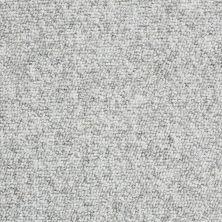 Shaw Floors Budget Berber (sutton) Newbarbourvll15 London Fog 07513_18708