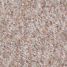 Shaw Floors Budget Berber (sutton) Newbarbourvll15 Prairie Sand 07706_18708