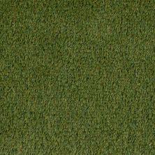 Shaw Grass Bermuda K9 Fg Olive 00300_190SG