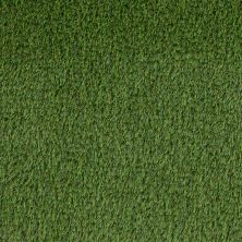 Shaw Grass Bermuda K9 Fg/Lime Green 00301_190SG