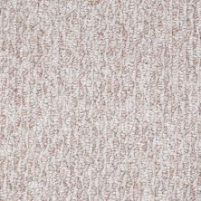 Shaw Floors Shaw Floor Studio Good Tidings 12′ Beach Pebble 00113_19481