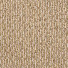 Shaw Floors Shaw Floor Studio Good Tidings 12′ Sisal Gold 00210_19481