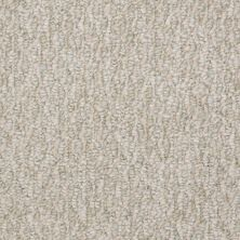 Shaw Floors Shaw Floor Studio Good Tidings 12′ Misty Meadow 00312_19481