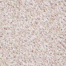 Shaw Floors Shaw Design Center City Limits Sand Dollar 00103_19595