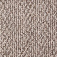 Shaw Floors Roll Special Sph695 Kodiak 00701_19795