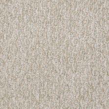 Shaw Floors Durango 12′ Spring Dew 00302_19815