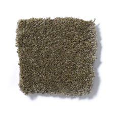 Shaw Floors Anso Premier Dealer Dividing Line 15′ Green Tea 00302_19830