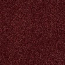 Shaw Floors Anso Premier Dealer Dividing Line 15′ Rutabaga 00801_19830