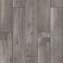 Shaw Floors Ceramic Solutions Harvest 6×36 Malt 00500_199TS