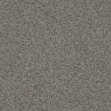 Anderson Tuftex SFA Chastanet II Ivy Mist 00333_19SSF
