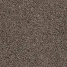 Anderson Tuftex SFA Chastanet II Tundra 00515_19SSF