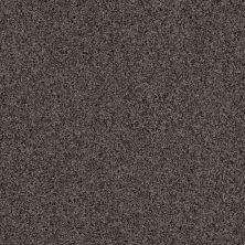 Anderson Tuftex SFA Chastanet II Stone Path 00555_19SSF
