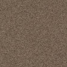 Anderson Tuftex SFA Chastanet II Burlap 00773_19SSF
